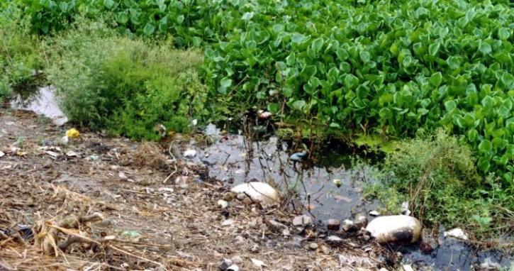 Kali Bein rijeka