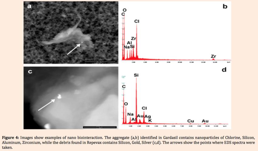 04.Gardasil-nanoteilchen